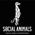 social-animals